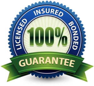 100% Licensed, Insured, Bonded